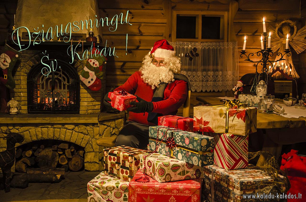 Džiaugsmingų Šv. Kalėdų !